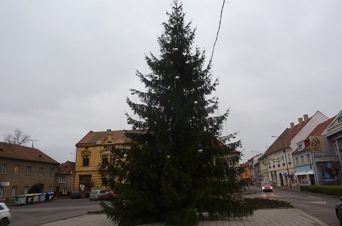 Vánoční strom. Foto: archiv MojeLounsko.cz