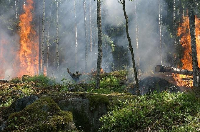 Požár, ilustrační foto. Foto: archiv Pixabay.com